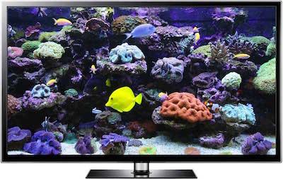 Living Coral Aquarium