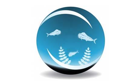 HD screensavers of fish tanks