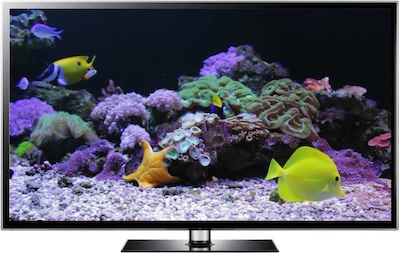 Coral Reef Video Screensaver by Uscenes