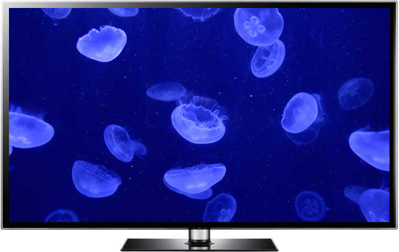 jellyfish aquarium screensaver