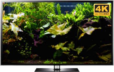 Ultra HD aquarium video