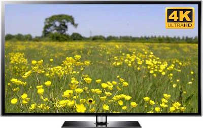 flowers video in 4k or full hd