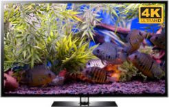 ultra hd fish tank video screensaver