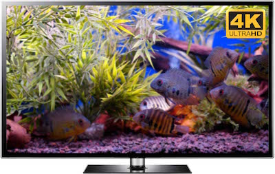 ultra hd fish tank video screensaver
