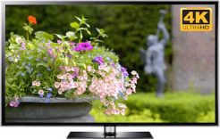 garden TV screensaver with statue and flowers