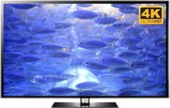4k fishes tv wallpaper