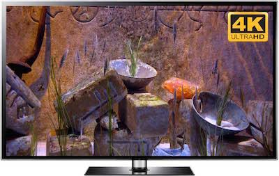 4k zen video fish tank