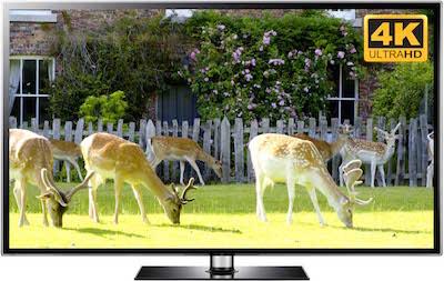 Xmas Reindeer Video