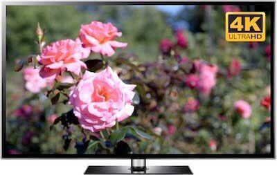garden video screensaver pink roses