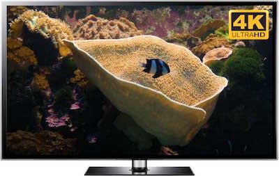 4K aquarium screensaver with yellow cup coral