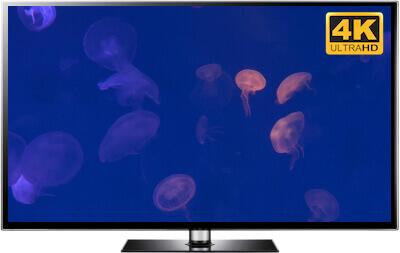 4K Jellyfish